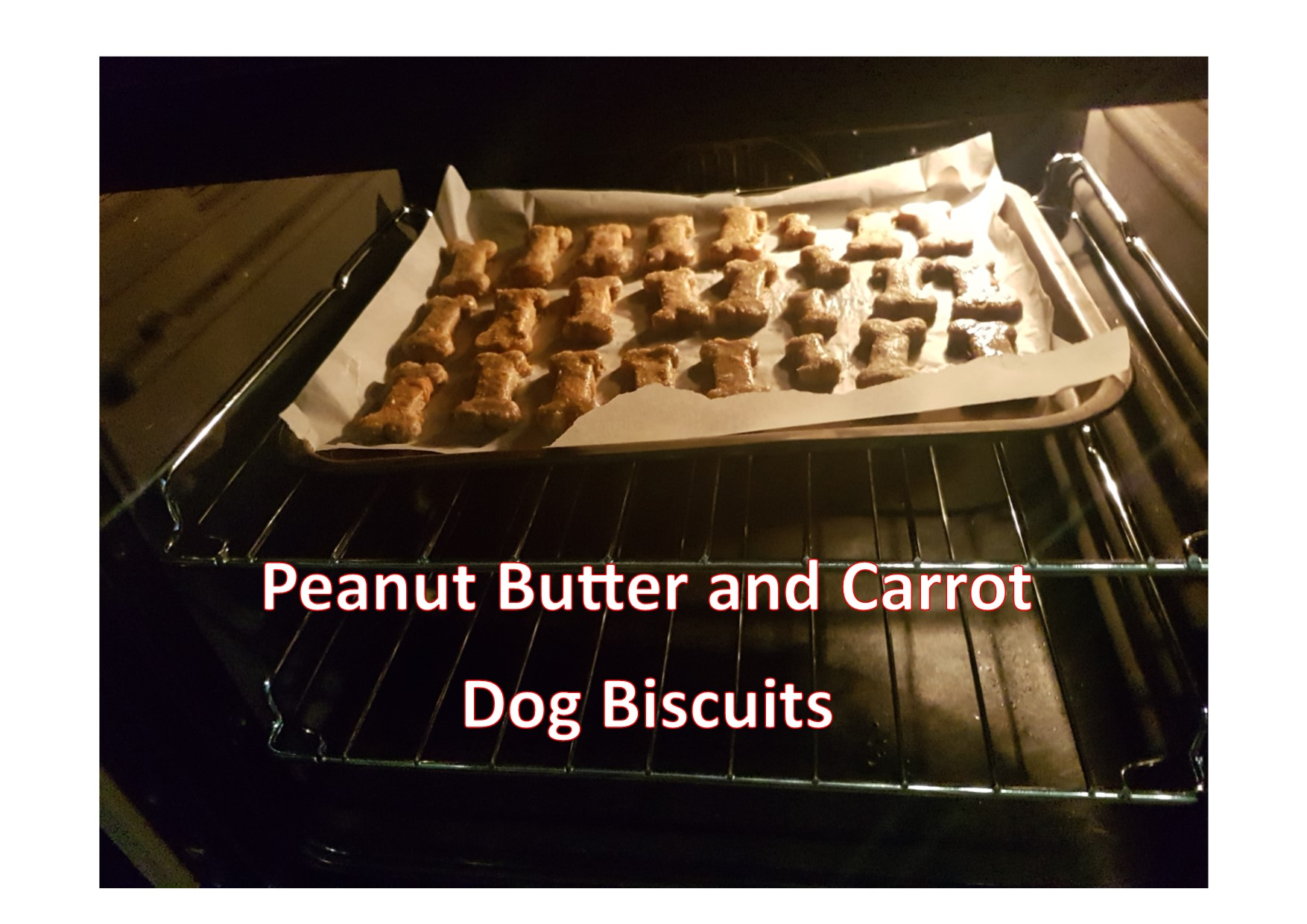 Baking my own dog biscuits for Rosie