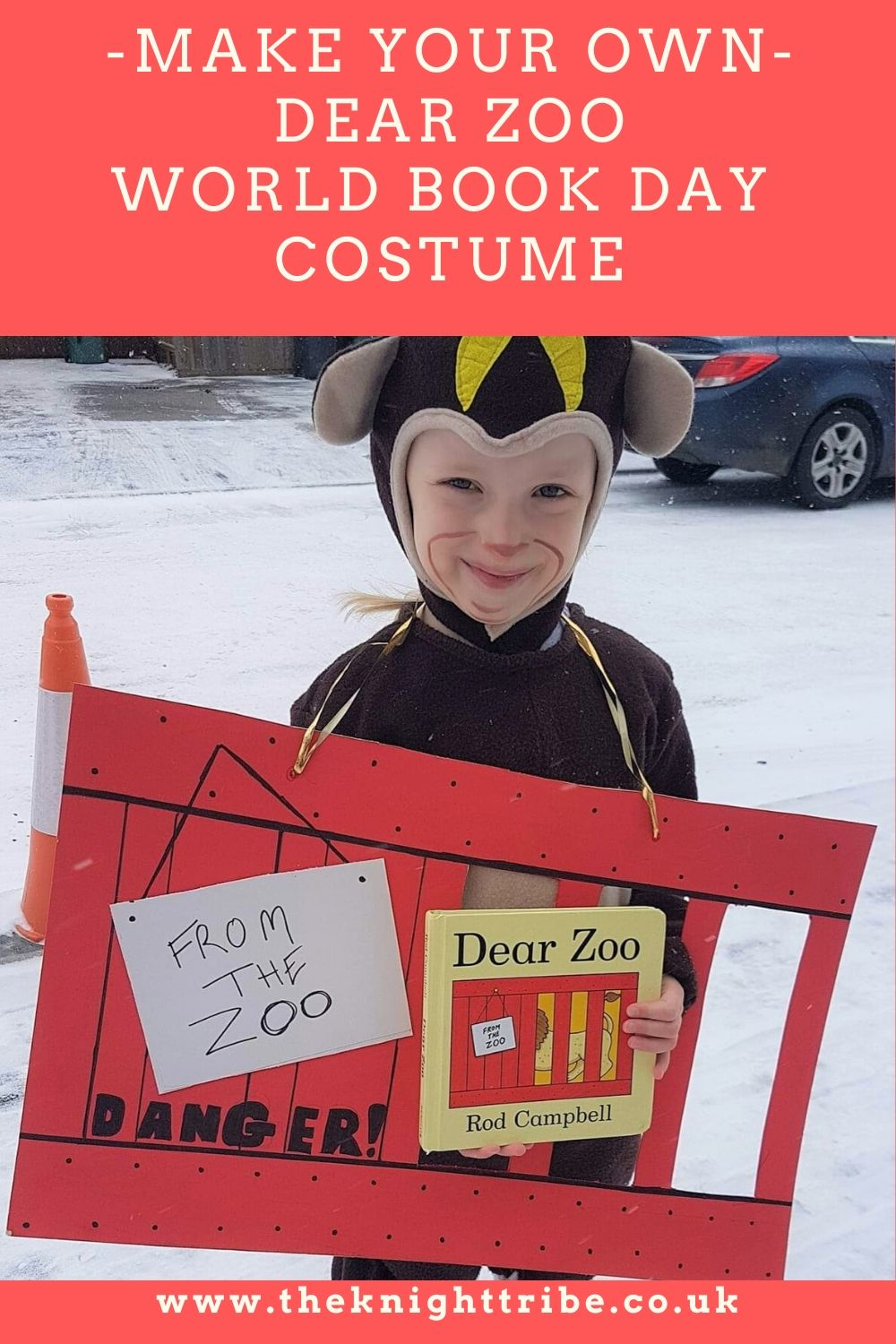 World book day costume