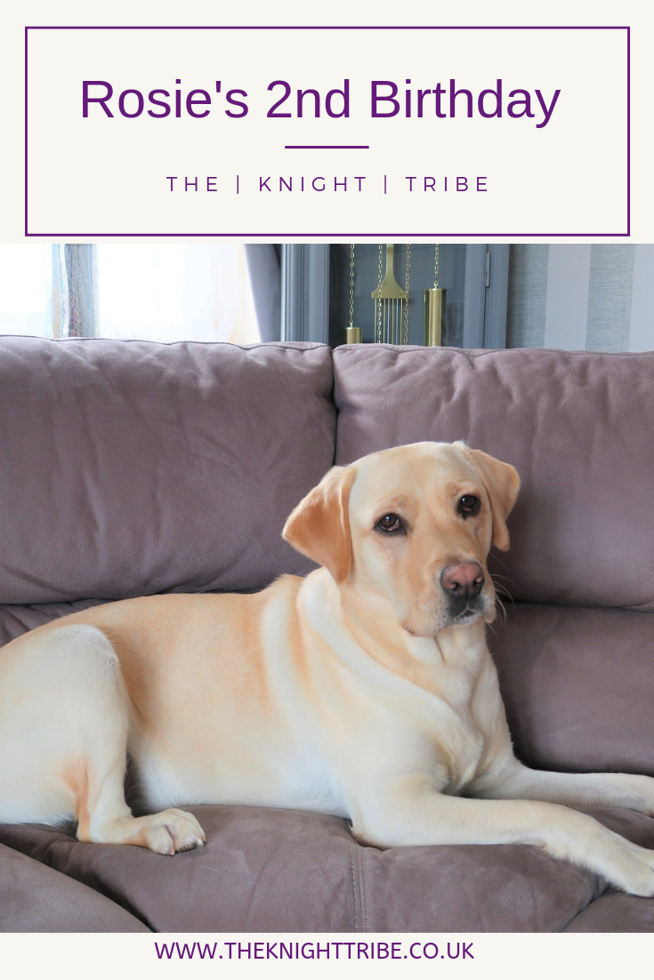 The knight tribe - Rosies 2nd birthday